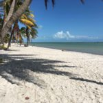 10 Summer Activities in Key West